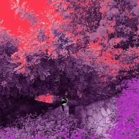 colors Wręcz