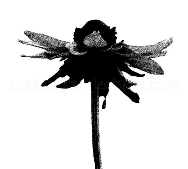 dekoracyjny wzór czarno-biały