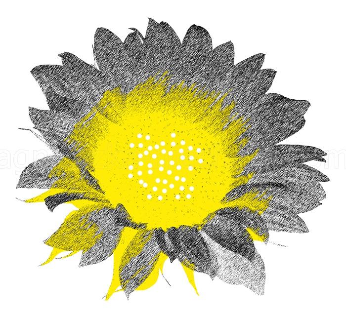 kwiat graficzny